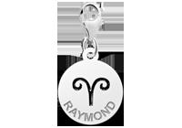 Zilveren bedeltje zodiac Ram